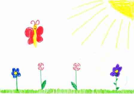 Blumen, Schmetterling, Sonne